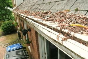 Cypress Gutter Cleaning