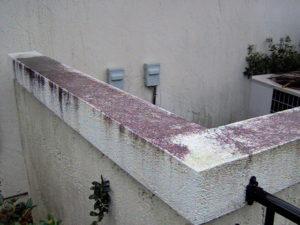 Soft Washing Stucco